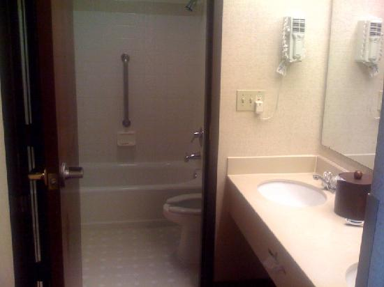Drury Inn & Suites Houston Hobby Airport: bathroom