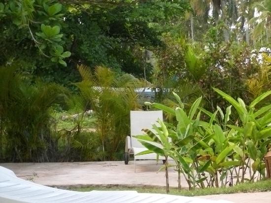 Punta Bonita Beach Resort : Poolarea