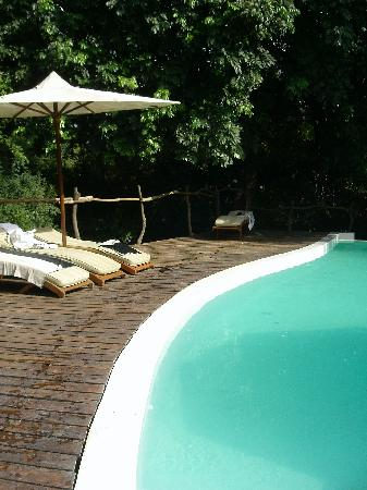 andBeyond Lake Manyara Tree Lodge: la piscine