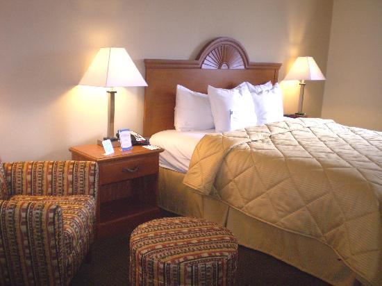 Comfort Inn Williamsport: guest room bed