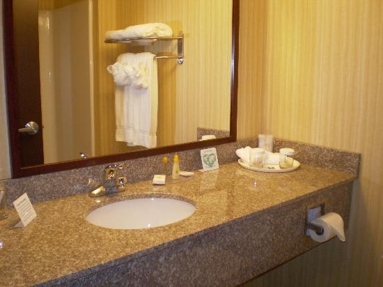 Comfort Inn Williamsport: bathroom