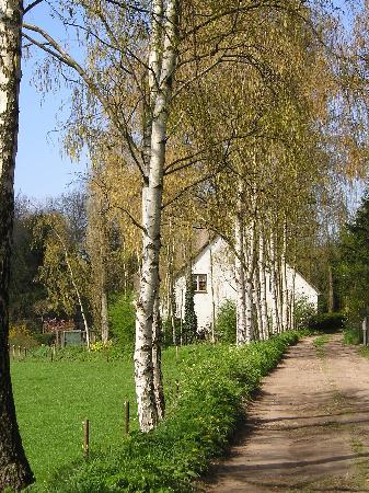 outskirts of Bergen op Zoom