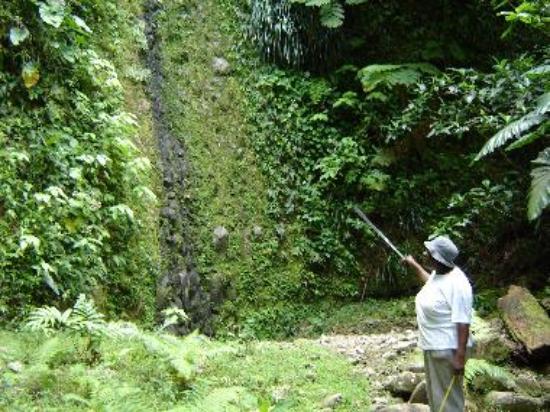 "The ""dry"" waterfall hike"