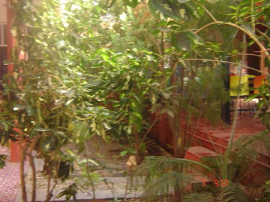 安朱納別墅照片