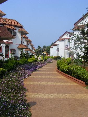 Nanu Resort Goa: The hotel rooms