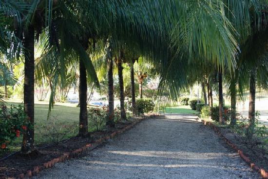 La Ensenada Lodge: The path to the pool