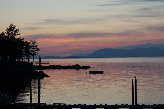 Lonesome Cove Resort: Sunsets from our cabin deck