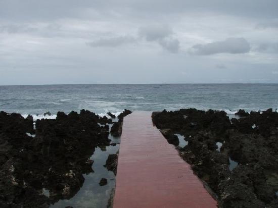 Seagrape Plantation Resort: Shoreline at Seagrapes
