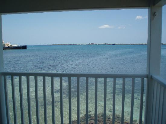 The Lighthouse: view from porch