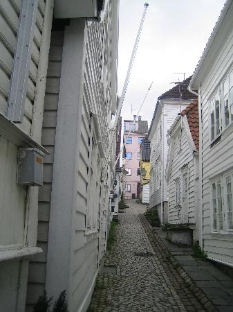 Skuteviken Guesthouse: The street looking up