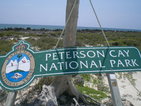 Peterson Cay National Park 사진