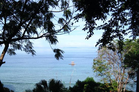 Bunaken Cha Cha Nature Resort: blick von unserem zimmer