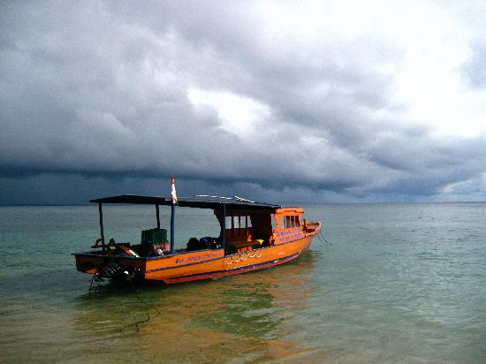 Bunaken Cha Cha Nature Resort: tauchboot