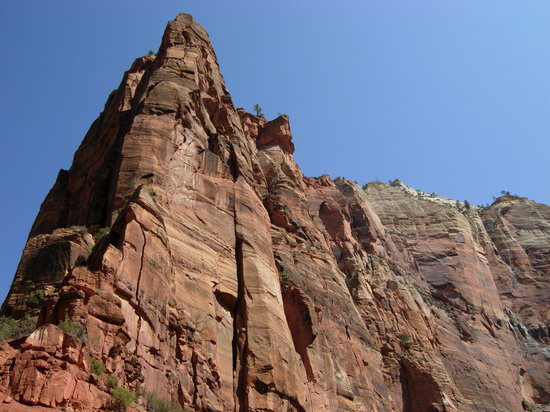 Zion National Park, UT: view looking up