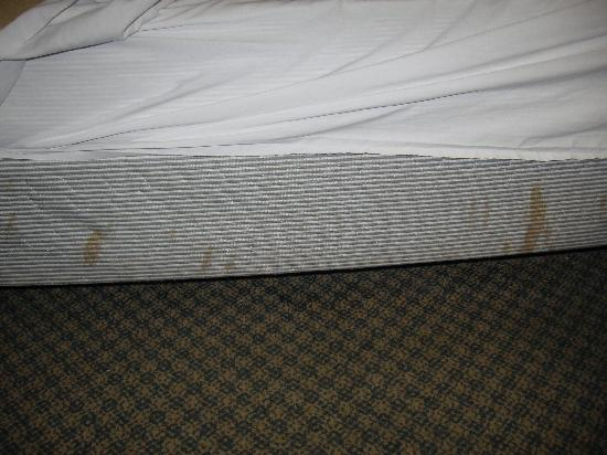 Greenwood Inn & Suites: stained mattress