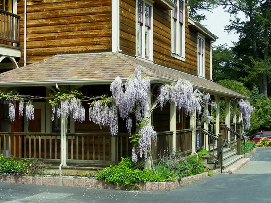 Point Reyes Seashore Lodge Resmi