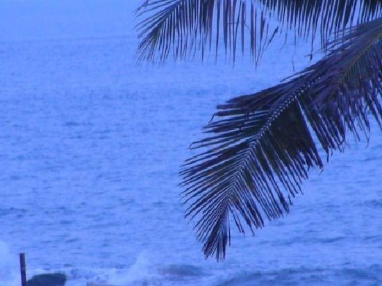 Palm Beach Hotel & Resort: Swaying Palms and Crashing Surf - view from the outdoor restaurant