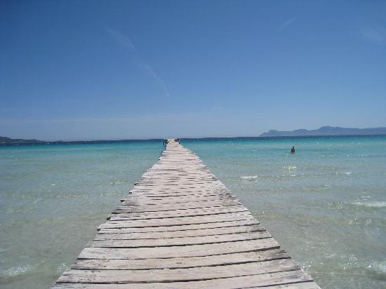 Rei del Mediterrani Palace: Playa de Muro 2