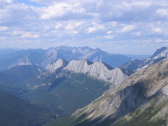 Sulphur Skyline Trail Jasper National Park All You