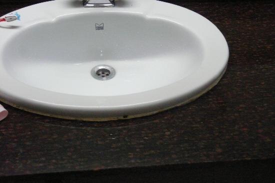 Shivalik View: Le lavabo, grand luxe !