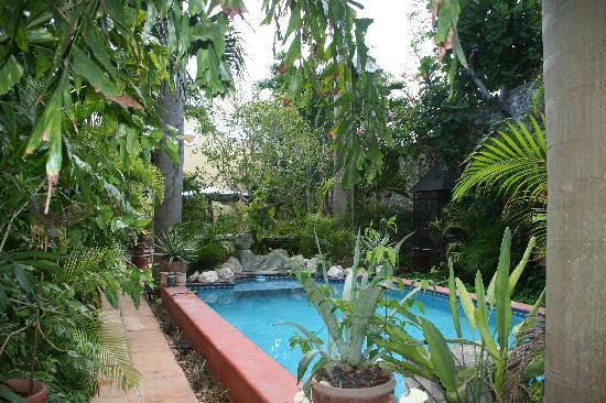 Los Arcos Bed & Breakfast: The pool