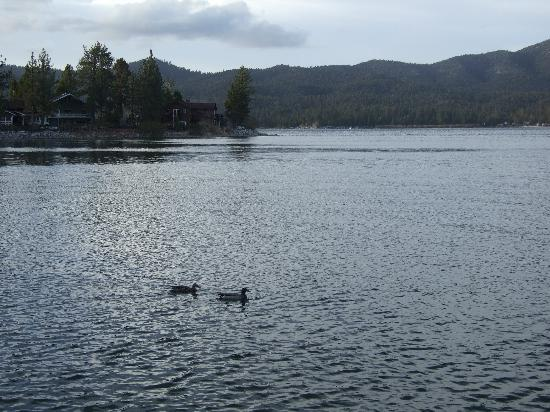 Big Bear Lake Front Lodge: View from lodge