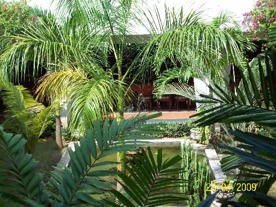 بيروالا, سريلانكا: gartenanlage im hotel