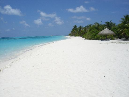 Kuredu Island Resort Spa Powder White Sandy Beach South Side