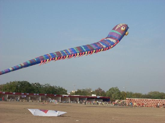 Kite festival at Rajkot - Jan 08