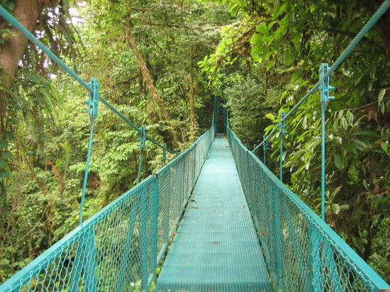 Monteverde, Costa Rica: Hanging Bridges