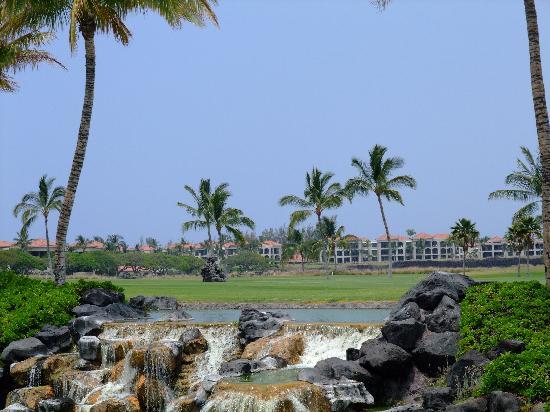 Waikoloa Beach Golf Course : Golf Course seen from the drive lane