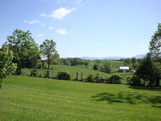 Piney Hill Bed & Breakfast: The View