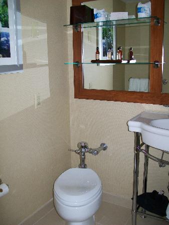 Saddle Brook Marriott : Part of the Bathroom