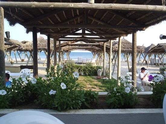 The Orangers Beach Resort & Bungalows: View from the beach cafe