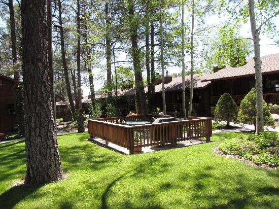 Shadow Mountain Lodge and Cabins : BBQ/Dining Area in center of grounds