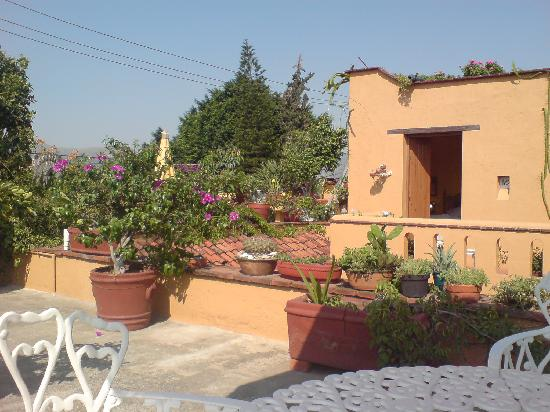 Hotel Azucenas: Lovely roof terrace, where you can enjoy home-made mezcal