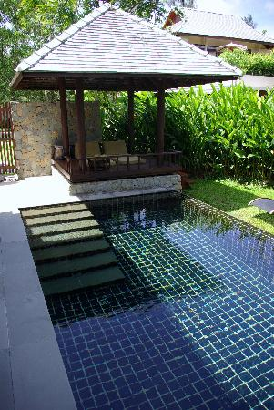 The Sarojin: Our Private Pool and Sala