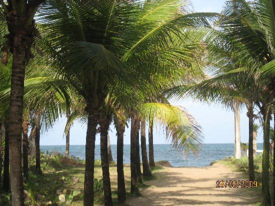Arandu Pousada : Path to the beach