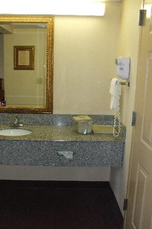 Park Grove Inn: sink area