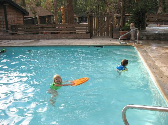 Arrowhead Pine Rose Cabins: Pine Rose cabins swimming pool