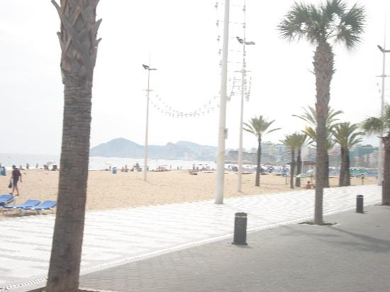 Hotel Marina Resort Benidorm : beach view