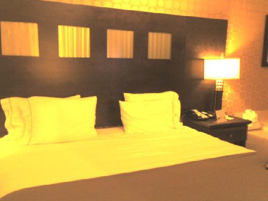 Holiday Inn Express Hotel & Suites Dallas South-DeSoto: bed was so comfortable