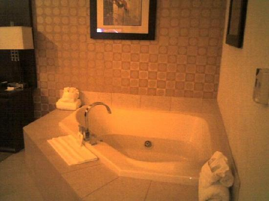 Holiday Inn Express Hotel & Suites Dallas South-DeSoto: great place this is room 129