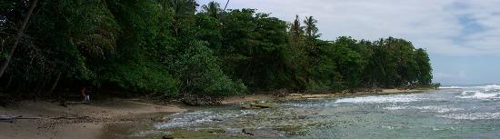 Congo Bongo Ecolodges Costa Rica: a beach nearby