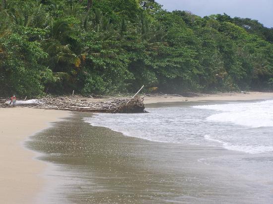 Congo Bongo Ecolodges Costa Rica: Congo Bongo beach
