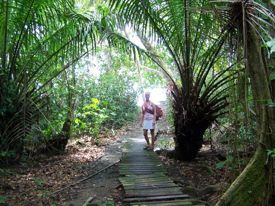 Congo Bongo Ecolodges Costa Rica: path to the beach
