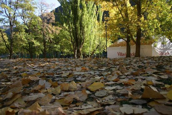 Mendoza, Argentine : Outono em Villavicencio