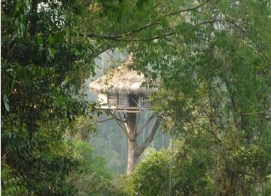 Huay Xai, ลาว: Treehouse on the Waterfall Experience