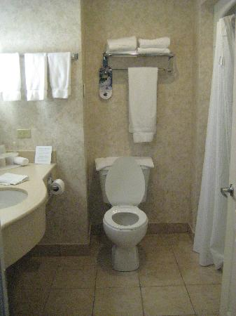 Holiday Inn Express Suites Gananoque: Bathroom