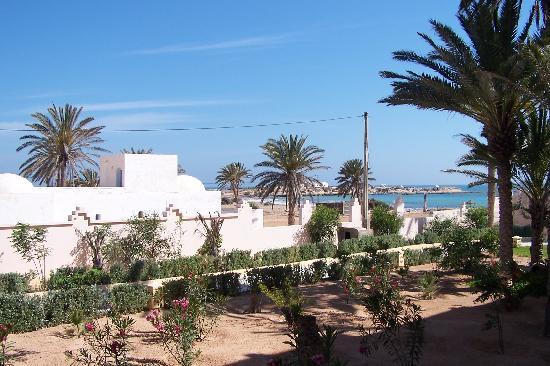 Safira Palms: l'arrière de l'hôtel